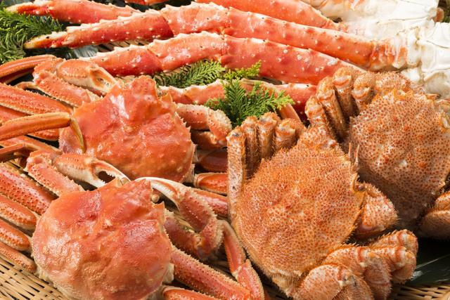 魚仕入れ 札幌
