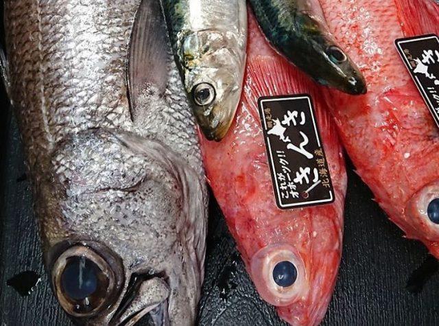 きんき 魚 値段