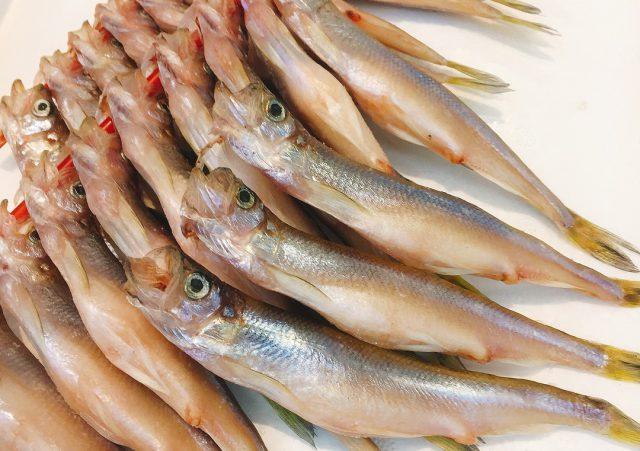 魚仕入れ 大阪