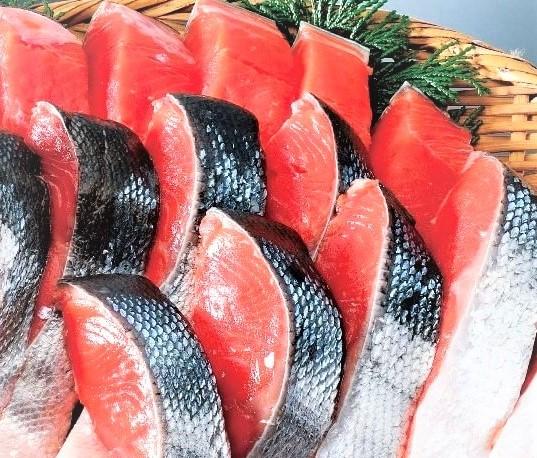 魚仕入れ先